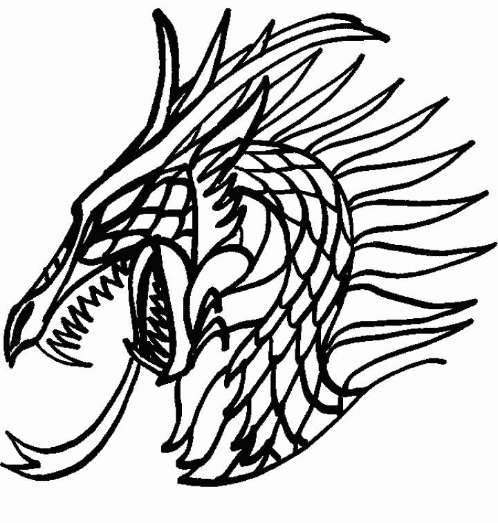 Dessin de dragon a colorier - Modele dessin dragon ...
