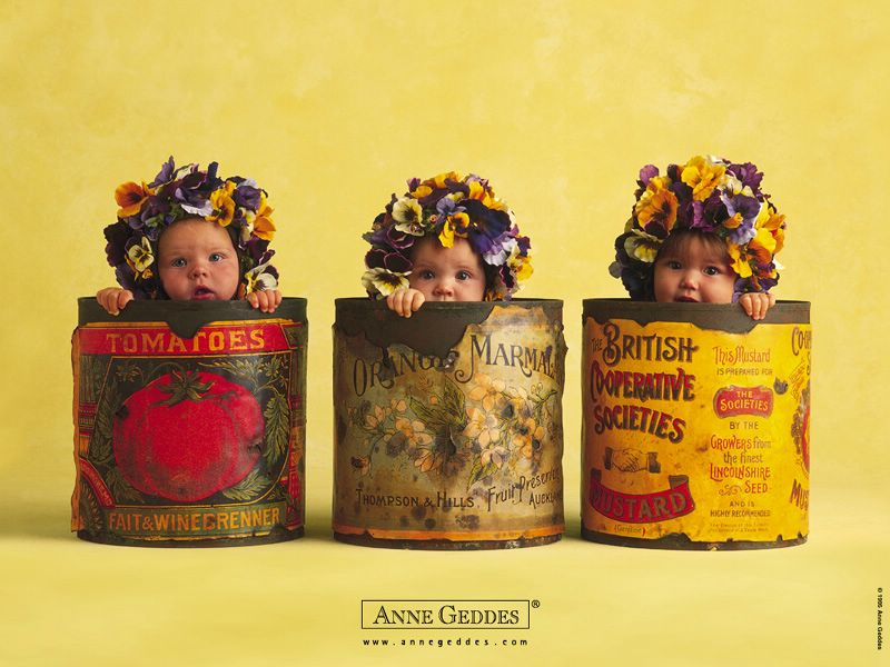 anne geddes wallpapers. ~Anne geddes holiday wallpaper :: ann geddes choclate photos~ ~anne geddes